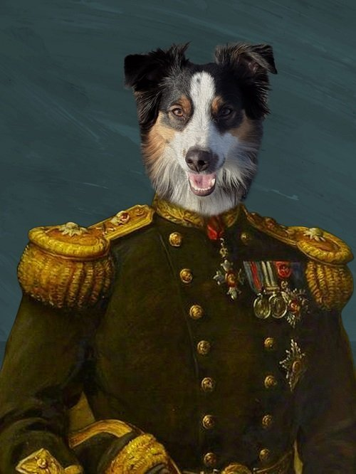 Cute Pet Portrait - Custom pet Portrait - The General