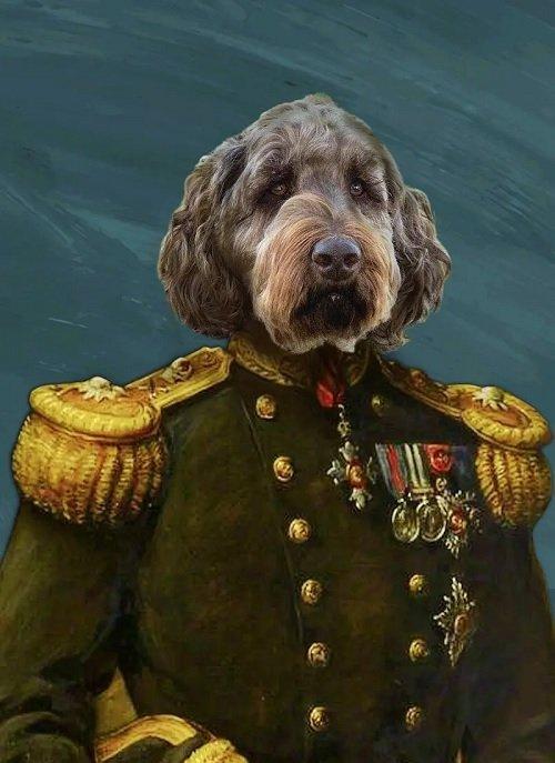 Cute Pet Portrait - The General - Custom Pet Portrait