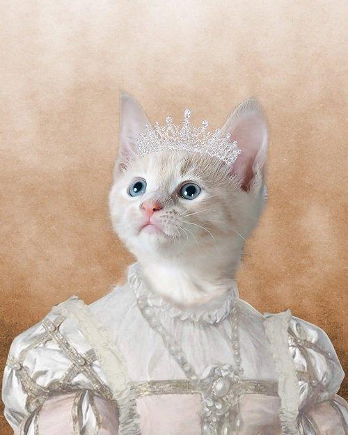 The Princess - Cat - Cute Pet Portrait